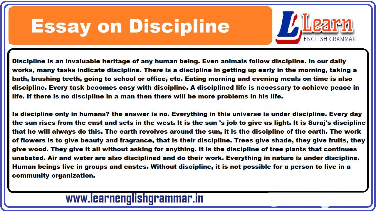 Discipline essays